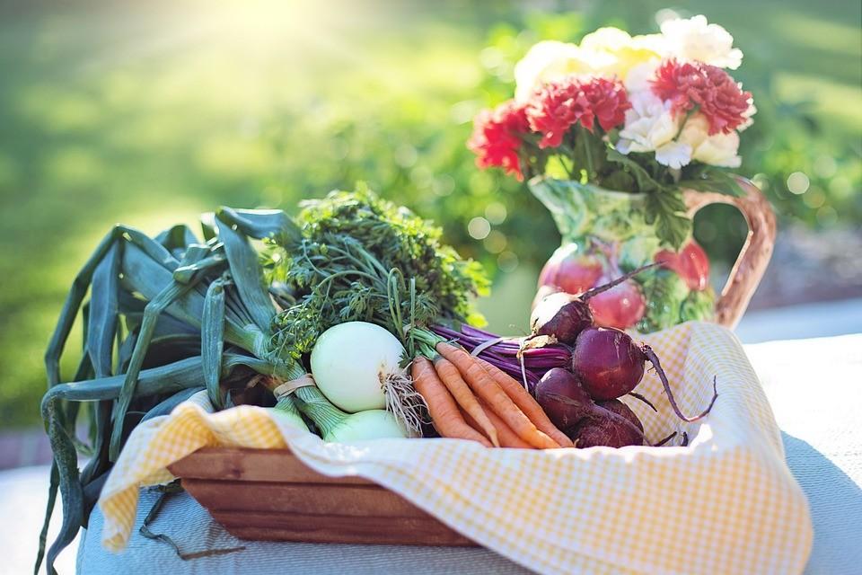 Γενικές αρχές Υγιεινής Διατροφής
